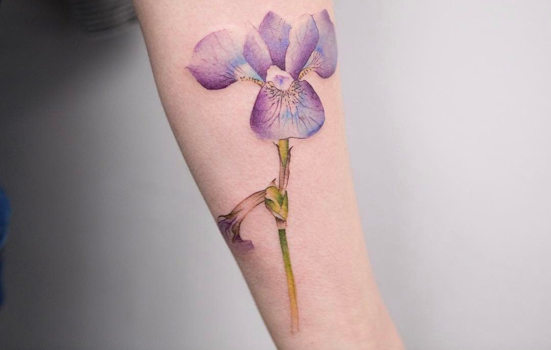 22 Grandiose Iris Tattoo Designs and Meanings